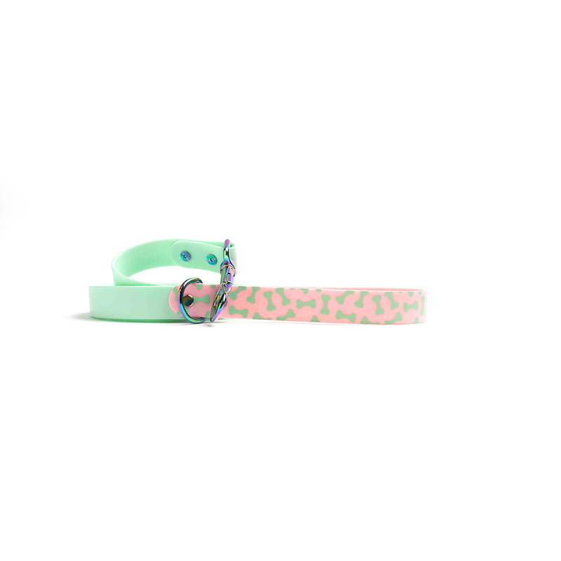 Seafoam Dog Lead-Bones Rainbow hardware