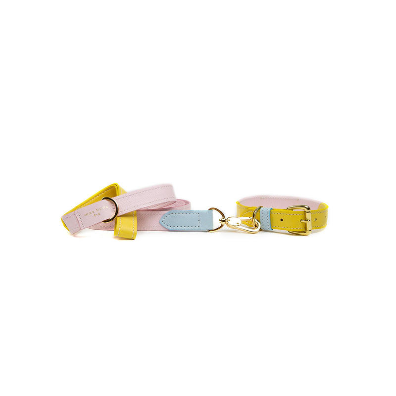 Isabel Dog Collar and Lead