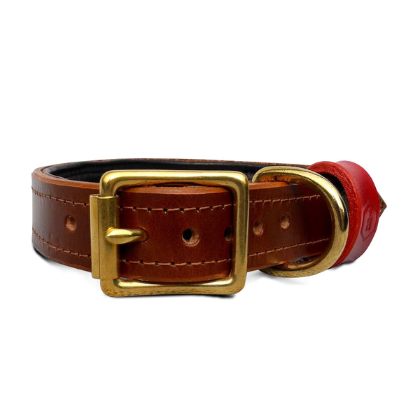 Houndworthy-Chestnut Brown Dog Collar