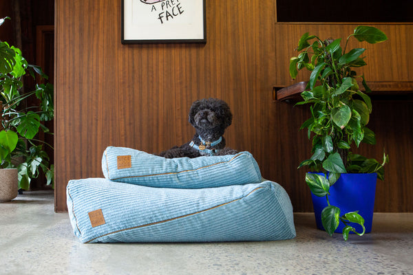Jumbo Cord Dog Bed-Small and Large