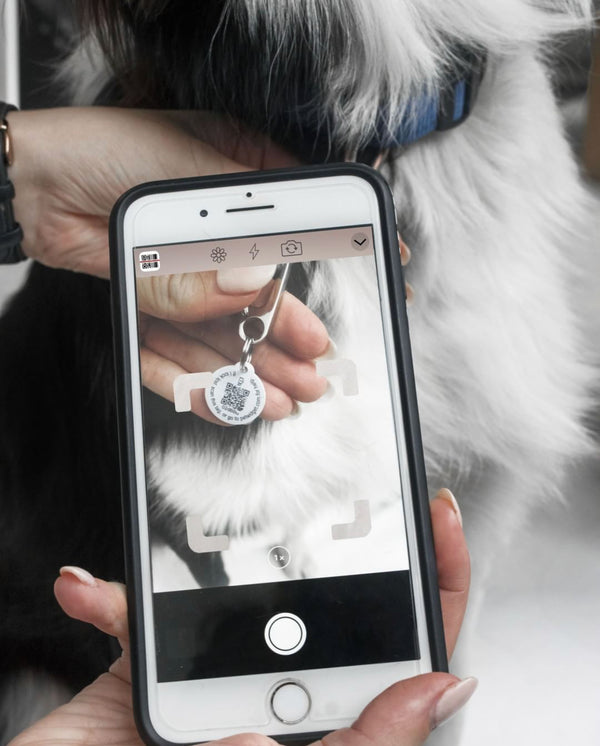 Pet Widget- Digital ID Tag-reader