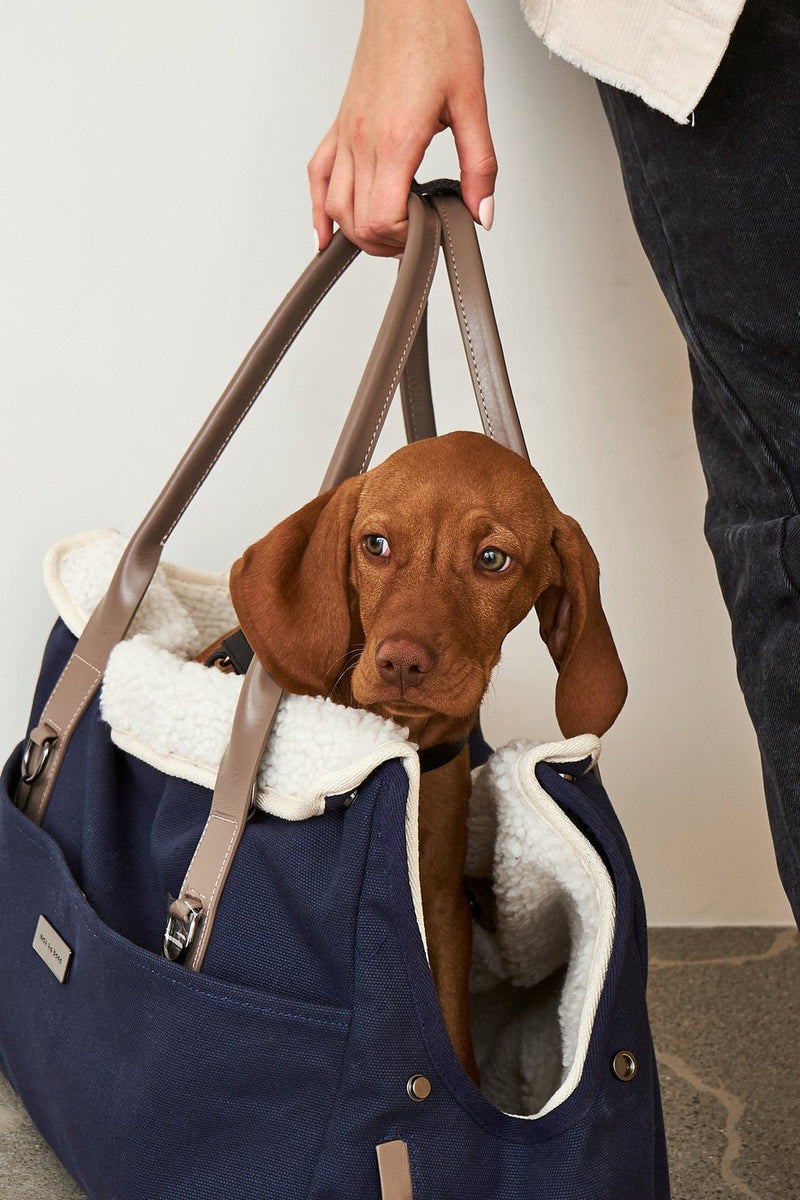 City Carrier Bag-Dog