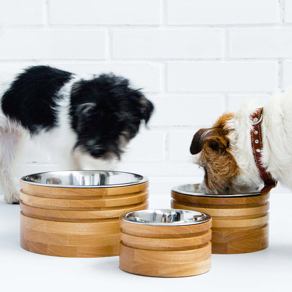 Pettel - Torre Dog Bowl