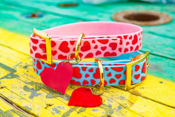 I Woof You Valentines Day Dog Collar