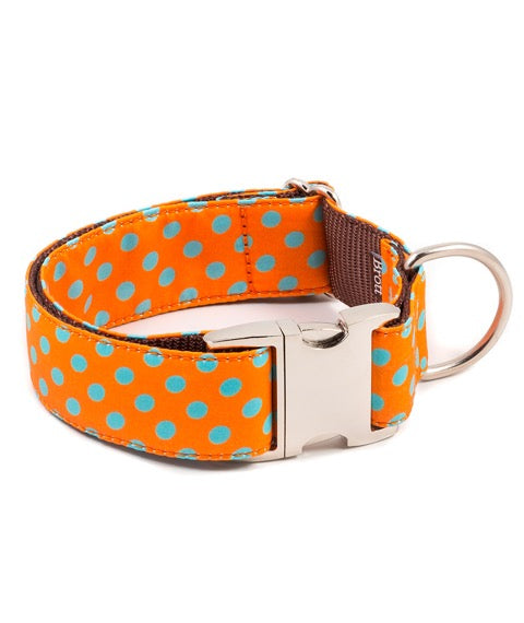 Brott-Pola Dog Collar