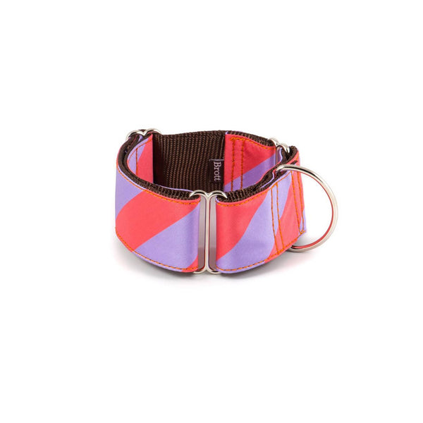 Sagaro Martingale Dog Collar