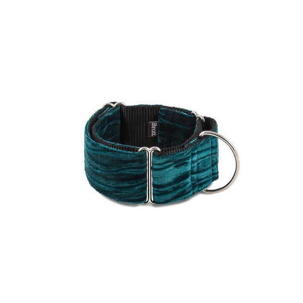 Verdu Martingale Dog Collar