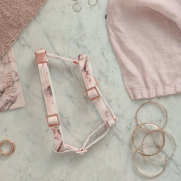 Marble Blush Dog Harness Lifestyle
