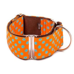 Brott-Pola Martingale Dog Collar