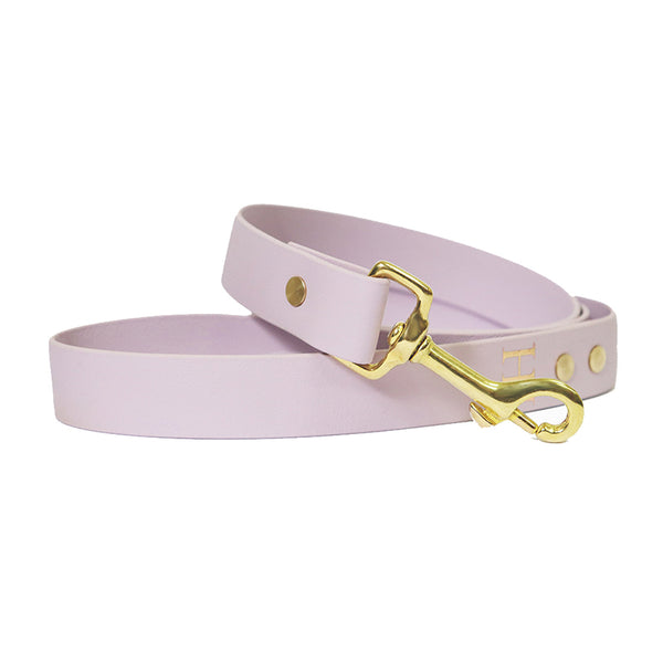 Purple Salt-Waterproof Dog Lead