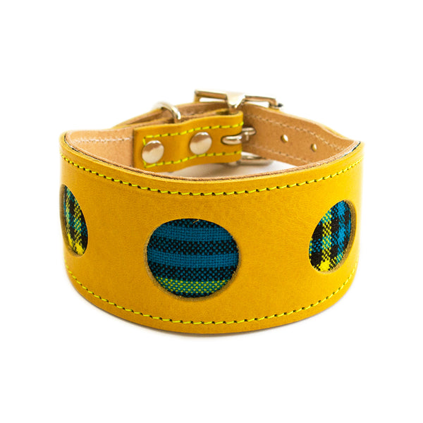 Shuka Blue Hound Collar