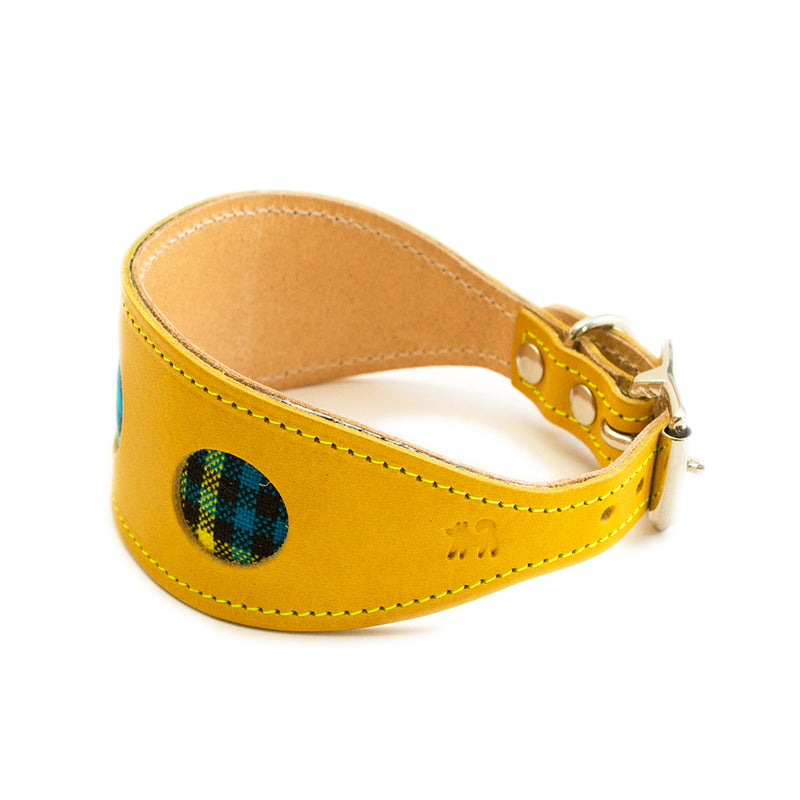 Shuka Blue Hound Collar-Side