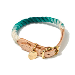 Teal Ombre Dog Collar