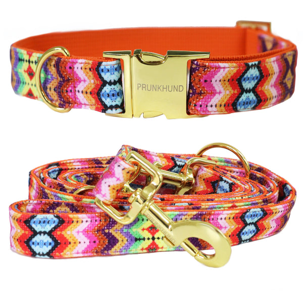 Zigzag Dog collar and lead