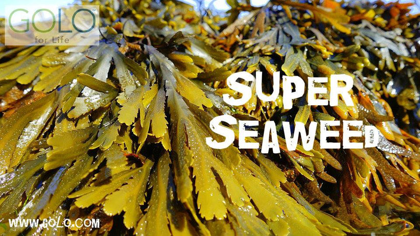The Health Benefits of Seaweed