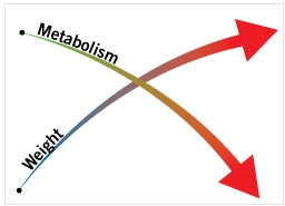 Chart showing how dieting over and over again causes more weight gain and a slow metabolism