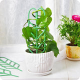 Hot sale garden plant support climbing plants flower fixed plant growth  garden tools.