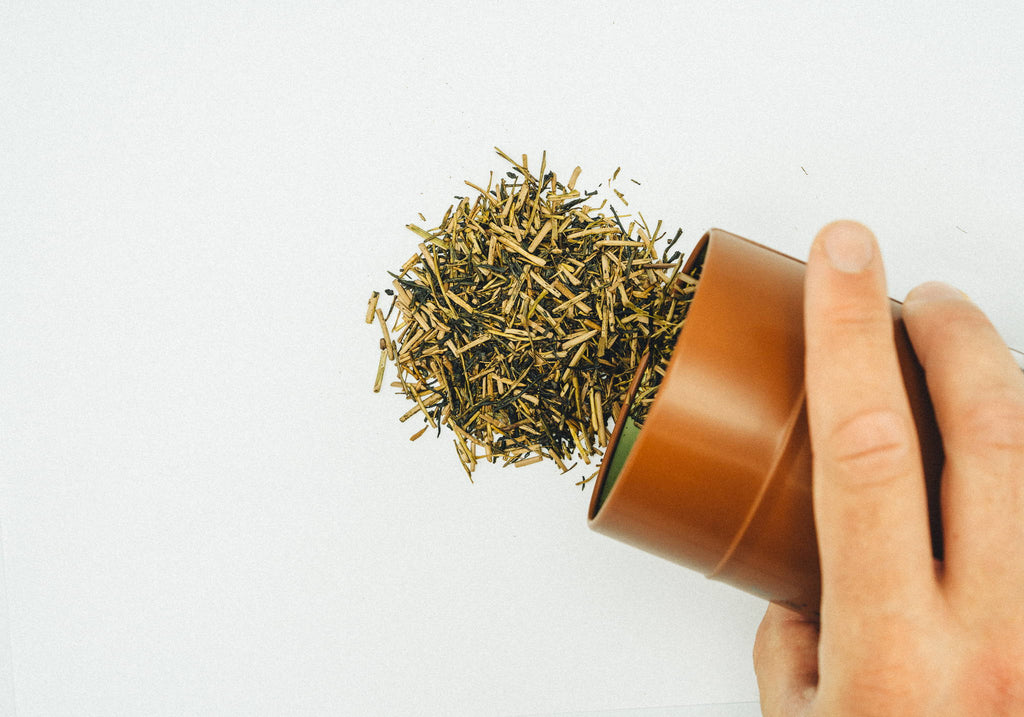 Hojicha: Japan's Ultimate Comfort Tea