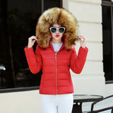 Fashion Limited Full Slim Cotton Jacket