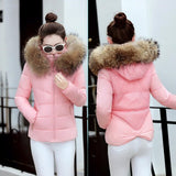 Fake fur collar Parka down cotton jacket