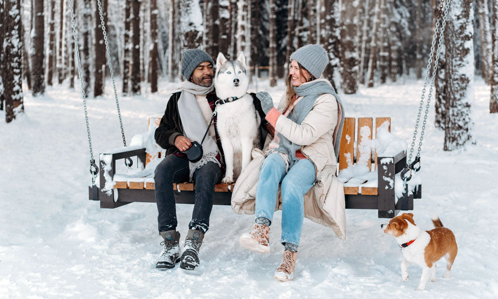 Snow dogs Photo byMikhail NilovfromPexels