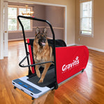 Dual Purpose Electric Treadmill For Dogs AND Humans. Dog training motorized running machine for pets and people