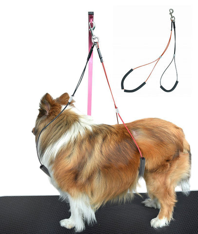 Dog Grooming Loop Set - Neck and Haunch Holder for use with Dog Grooming Table