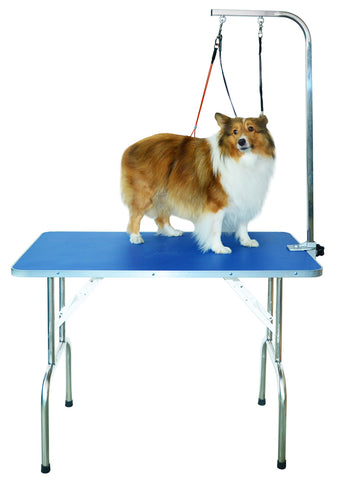 Professional Dog Grooming Table