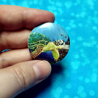 Rapture sea turtle buttons