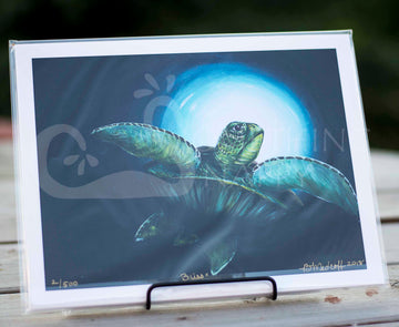 Bliss Sea Turtle Giclee Prints