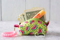 """Down By The Bay"" Watermelon Cash & Carry Micro Bag"
