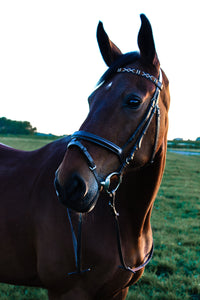 COCOA - BROWBAND