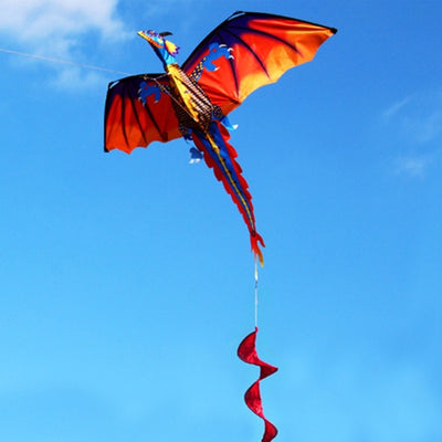 Dragon Kite Single Line With Tail Kites Line 100m. Outdoor Sports Toy