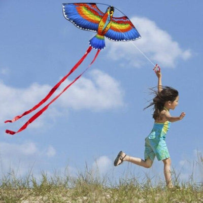 Parrot Kite With Long Tail And Handle Line 30m. For Kids Outdoor Sport