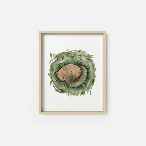 Sleeping Squirrel Art Print