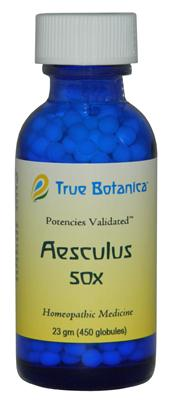 Aesculus 50X