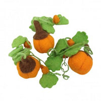 Papoose | Mini Pumpkin with vines