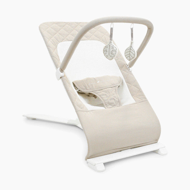 Baby Delight Go With Me Organic Alpine Deluxe Portable Bouncer