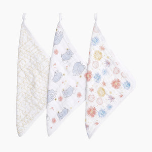 Aden + Anais Washcloth Set (3 Pack)