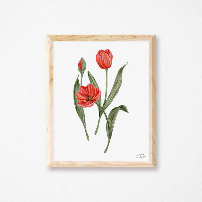 Affiche Tulipes