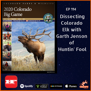 Dissecting Colorado Elk Hunting Opportunities