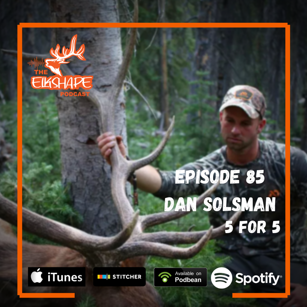 ElkShape Podcast - Dan Solsman goes 5 for 5 on Public Land Elk