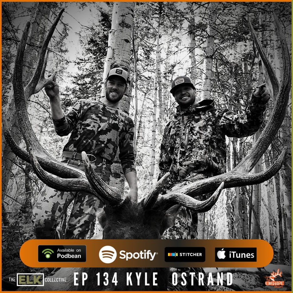 Kyle Ostrand on the Secrets of Elk Hunting Success