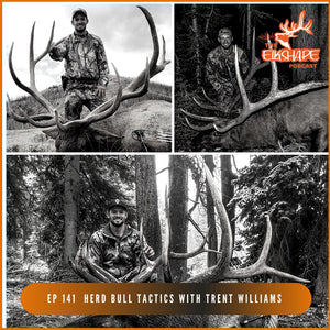 Trent Williams from WY, 3 bulls over 350 on PUBLIC LAND | Herd Bull Tactics