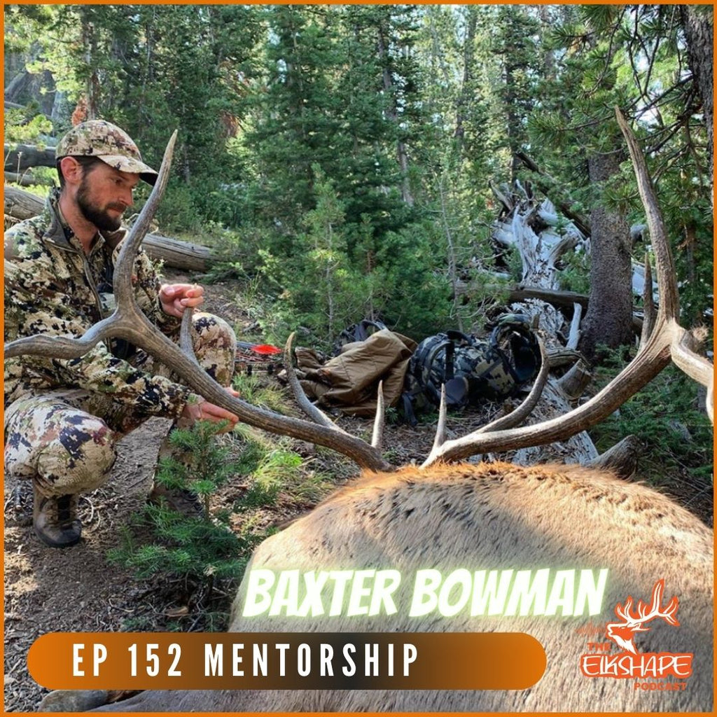 How To Mentor NEW Elk Hunters