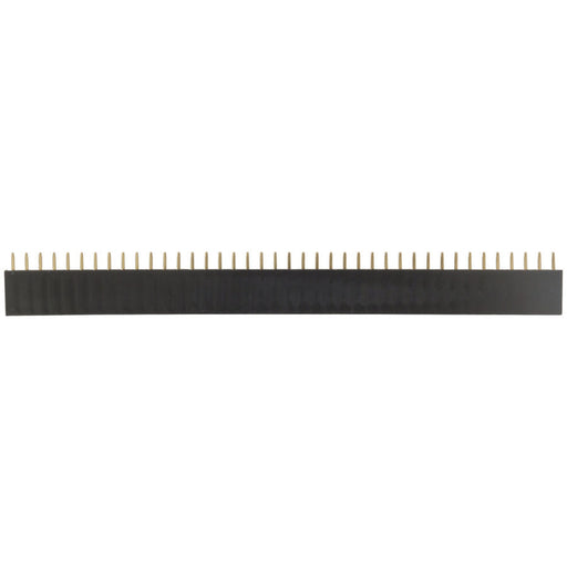 40 Pin Female Header Strip