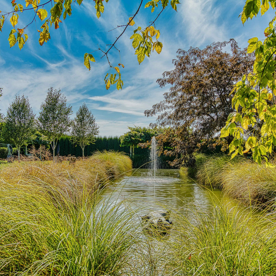 ARCHIVE - SOLD SCULPTURE