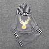 Long Sleeve Hooded Baby Girl Outfit