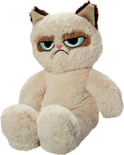 Load image into Gallery viewer, Grumpy Cat Floppy Plush Cat/Dog Toy