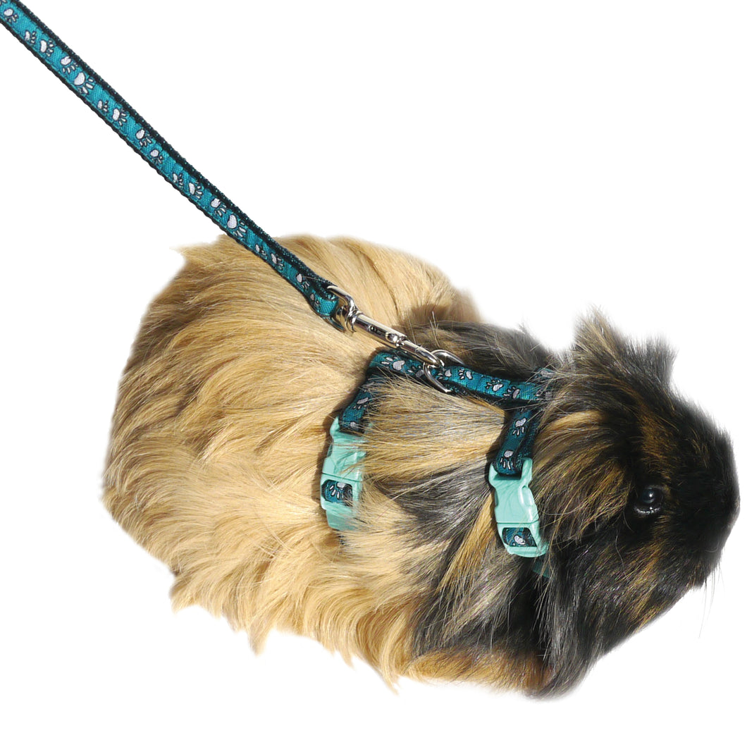 Paw Print Harness & Lead Small